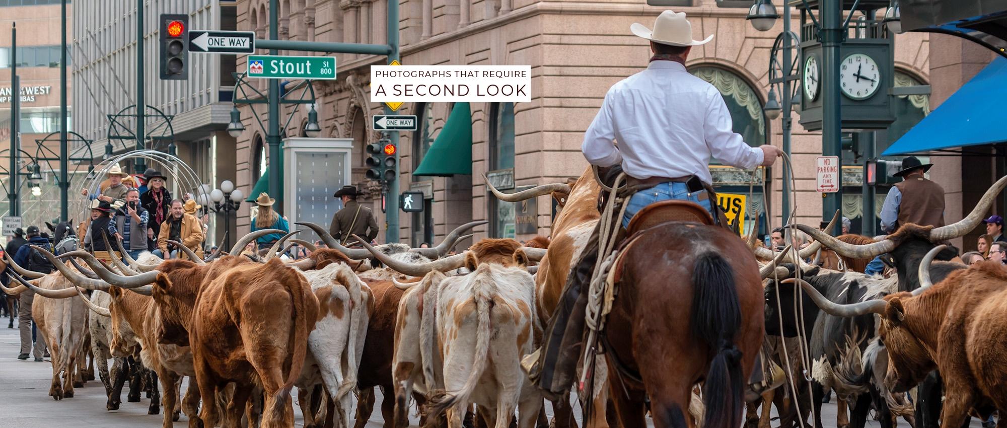 2019 Stock Show Parade